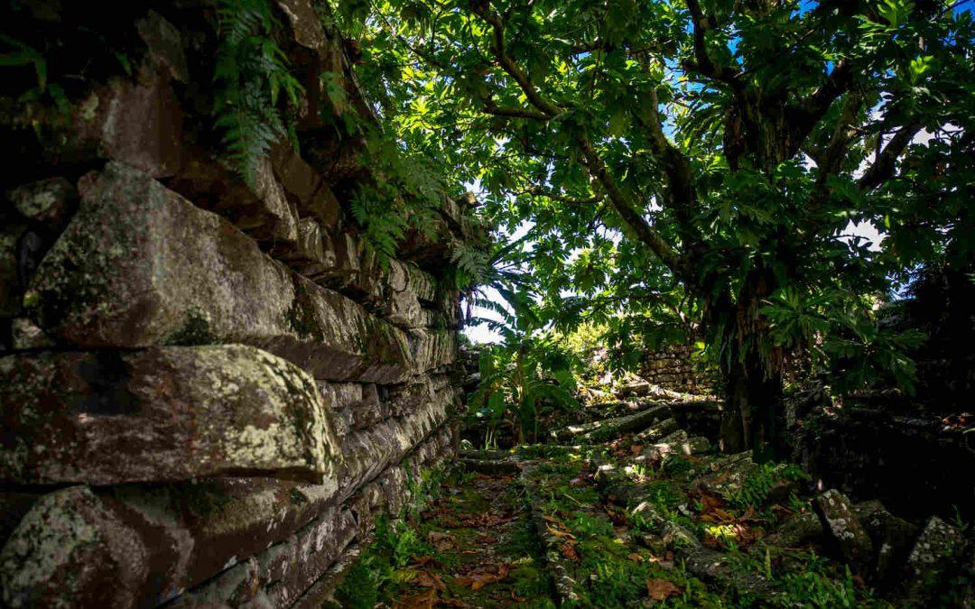Preghiera e riflessione con la natura: passeggiata Laudato Si'